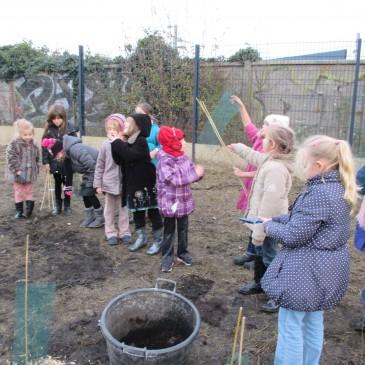 Les CE1 plantent des arbres !